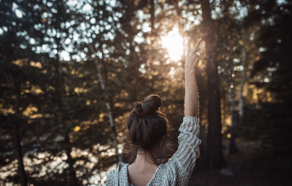 Picture forest, summer, girl, the sun, trees, happiness, mood, back, hand, Sospiri