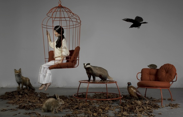 Picture animals, girl, animals, hare, chair, cell, brunette, Fox, crow, hedgehog, table.leaves, stuffed, badger, pheasant