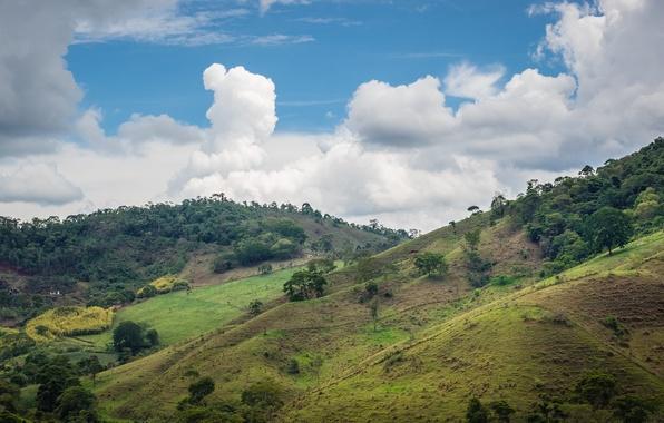Picture the sky, clouds, house, hills, Brazil, cattle, valley, Minas Gerais, farm