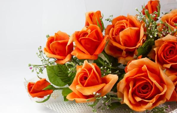 Picture leaves, flowers, stems, roses, bouquet, petals, orange, artificial