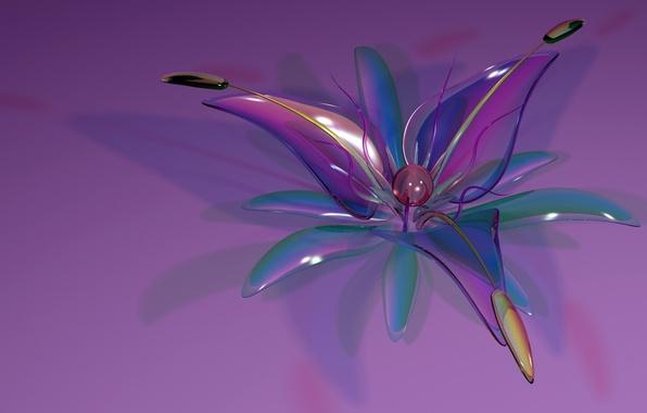 Picture flower, glass, petals