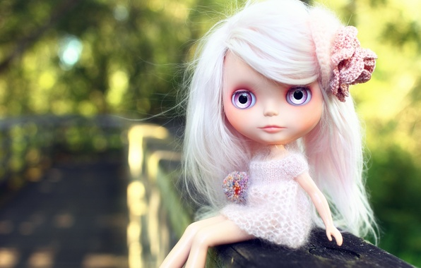 Picture eyes, Wallpaper, clothing, hair, doll, Board, barrette, Blythe, brooch