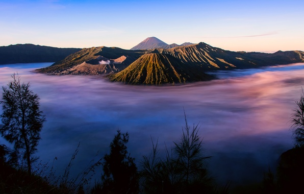 Picture grass, fog, island, morning, Indonesia, silhouettes, Java, Tengger, volcanic complex-the Caldera TenGer, the volcano Bromo