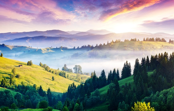 Picture the sun, mountains, fog, hills, panorama, house, Ukraine, forest, Carpathians