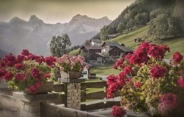 Picture flowers, mountains, Austria, village, Alps, houses, Austria, Alps, Tyrol, Tyrol, Bschlabs, Slabs