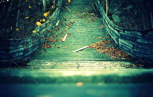 Picture autumn, leaves, branches, bridge, Board, yellow