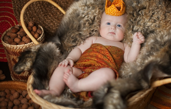 Picture children, basket, crown, baby, skin, fur, nuts, child, Anna Levankova