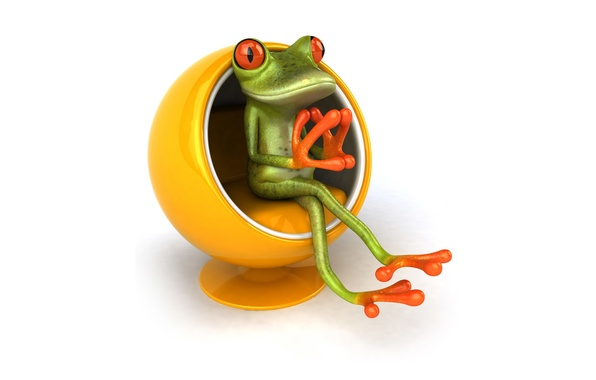 Picture graphics, frog, chair, chair, Free frog 3d