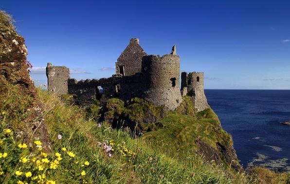 Picture flowers, nature, castle, the ocean