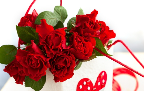 Picture flowers, roses, love, rose, heart, romantic, Valentine's Day