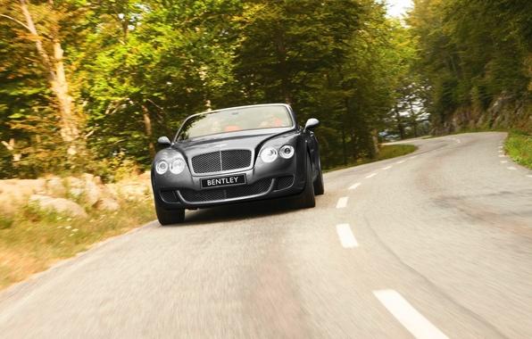 Picture Bentley, Continental, Road, Machine, Grey, Bentley, GTC, The front