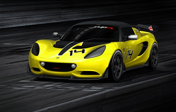 Picture Lotus, Cup, Elise