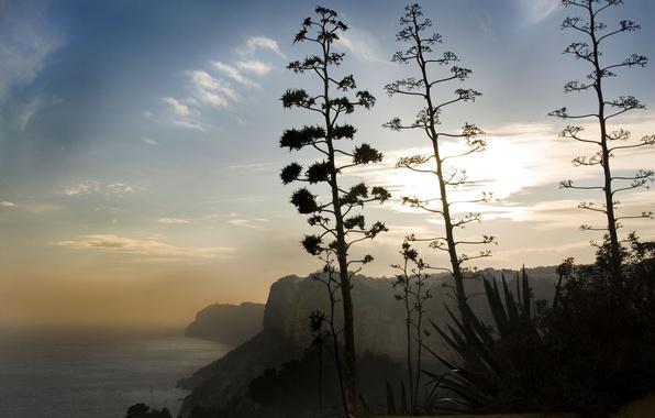 Picture coast, Spain, Costa Blanca, Cumbre del Sol