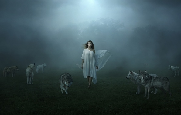Picture girl, fog, wolves