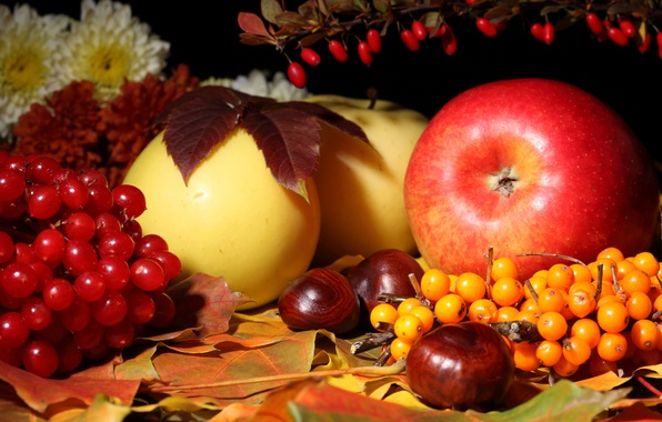 Picture autumn, leaves, flowers, apples, still life, chestnut, Kalina, sea buckthorn