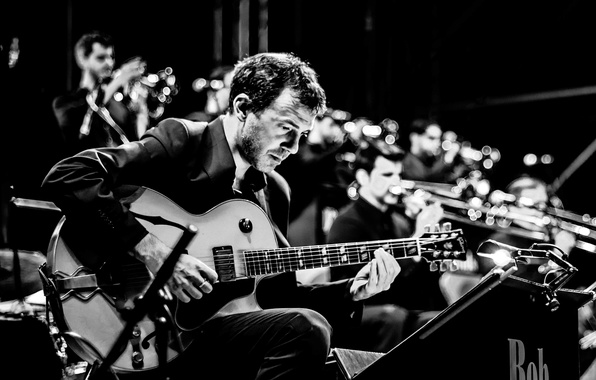 Picture music, guitar, male, musician, song, orchestra