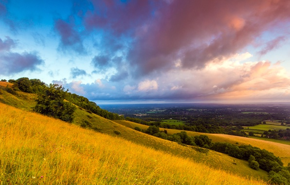 Picture field, grass, clouds, trees, landscape, nature, dawn, hills, England, morning, UK, England, Great Britain, The …