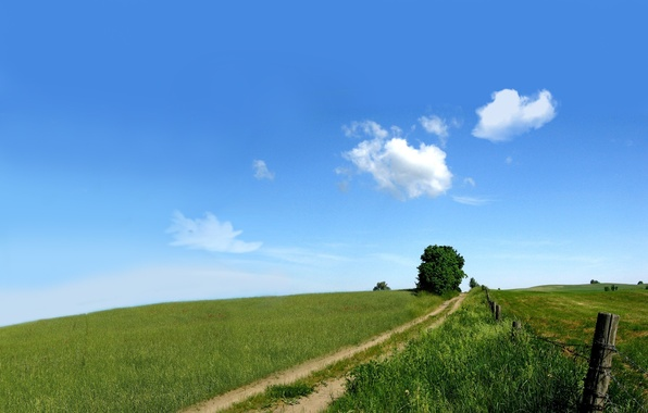 Picture road, greens, field, the sky, nature