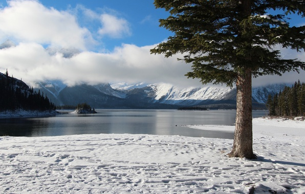 Picture winter, the sky, clouds, snow, trees, mountains, lake, island