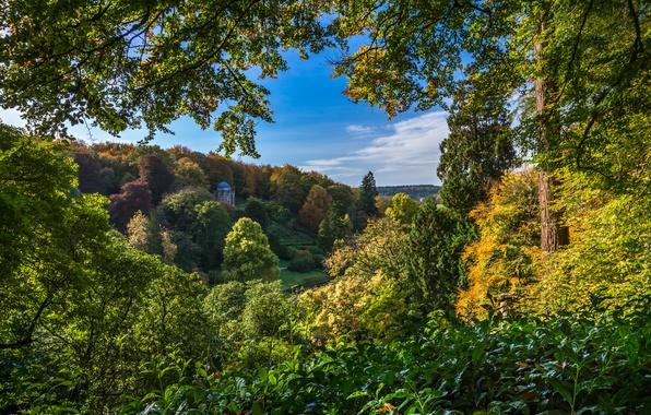 Picture autumn, trees, lake, England, Stored, England, Wiltshire, Stourhead Garden, Wiltshire, the landscape Park