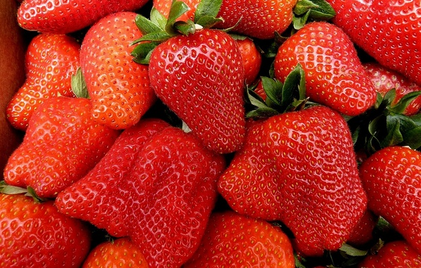 Picture strawberry, berry, red, ripe, juicy