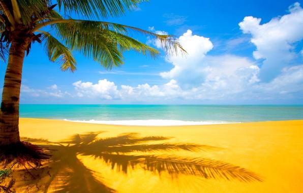 Picture sand, sea, beach, clouds, tropics, Palma