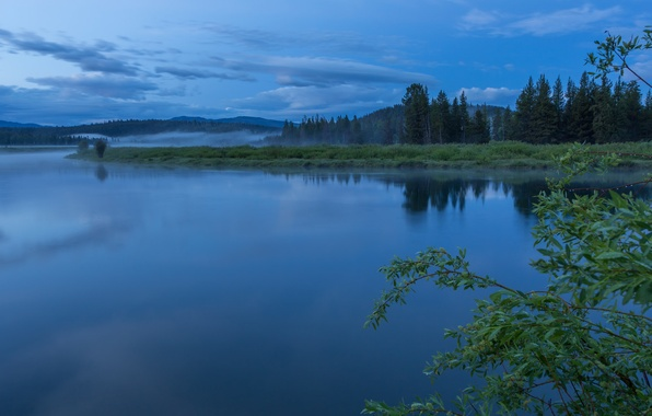 Picture forest, the sky, clouds, trees, fog, reflection, river, morning, USA, national Park, Grand Teton, Wyoming, …