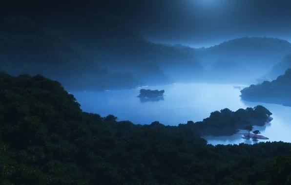 Picture sea, forest, Islands, night, fog, lake, hills, art, moonlight