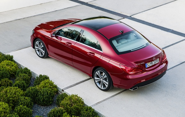 Picture road, red, Mercedes, red, Mercedes, road, the bushes, bush, CLA, 220