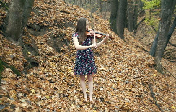 Picture autumn, girl, music, violin