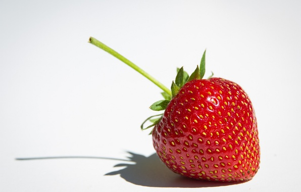 Picture macro, strawberry, berry, white background
