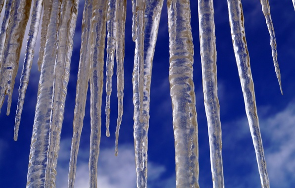 Picture winter, the sky, macro, icicles
