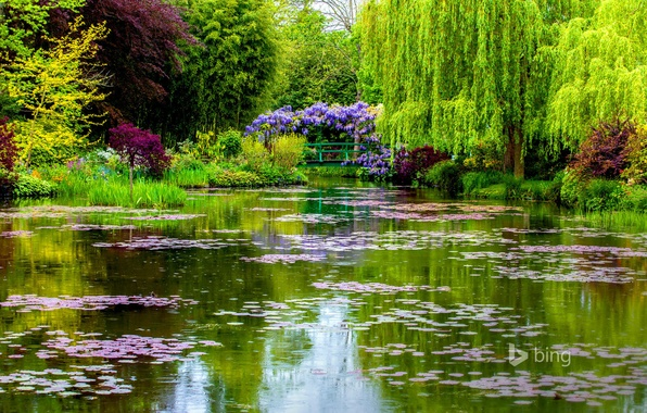 Picture bridge, France, spring, pond, Normandy, Giverny, Monet's garden