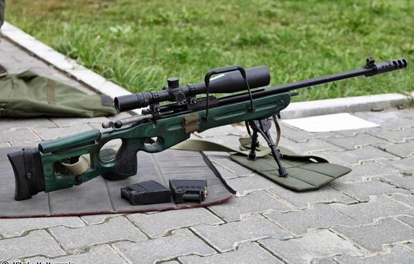 Picture sniper rifle, clips, SV-98, 7.62 mm, SV-98, sniper rifle