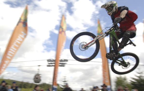 Picture bike, track, freeride, mountain bike