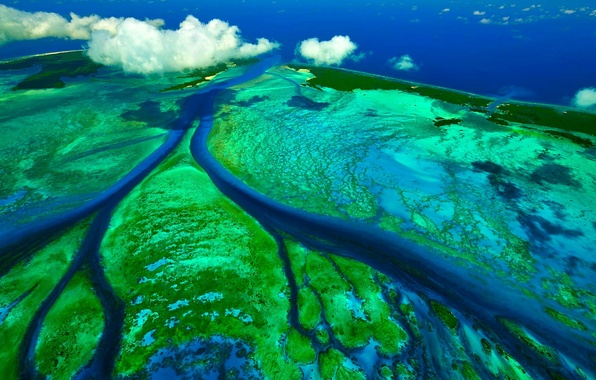 Picture The Indian ocean, tidal channels, Sechelski Islands, the Aldabra Atoll