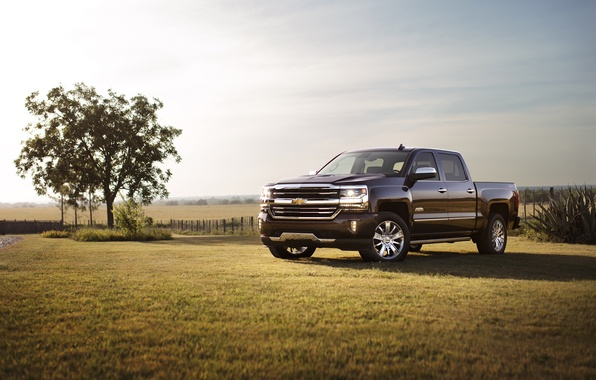 Picture Chevrolet, Chevrolet, Double Cab, Silverado, silverado, 2016