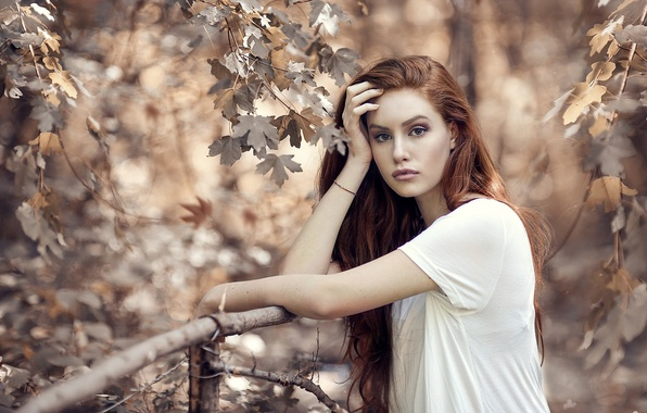 Picture autumn, look, leaves, girl, branches, nature, maple, red, Alessandro Di Cicco