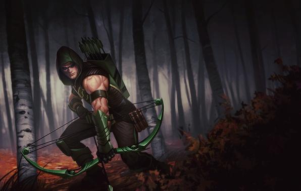 Picture Green Arrow, DC Comics, Oliver Queen, Green arrow