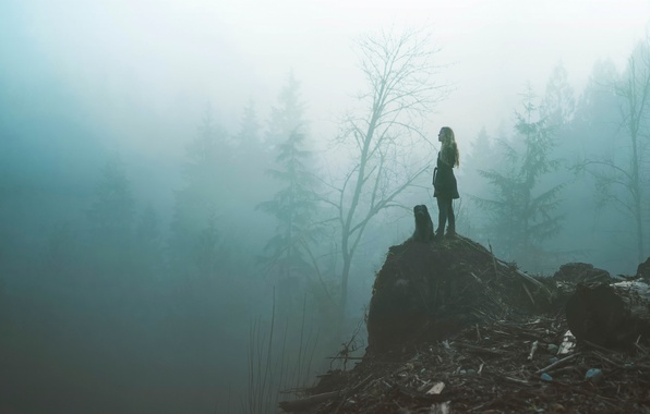 Picture forest, girl, fog, dog