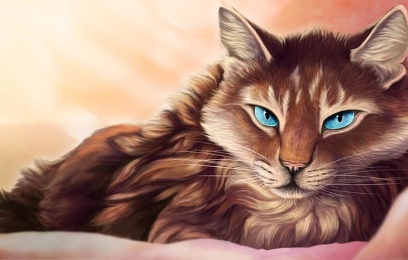 Picture cat, eyes, look, blue, lies, blanket, art