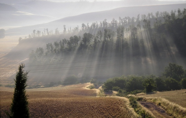 Picture road, nature, fog, hills, beauty, morning