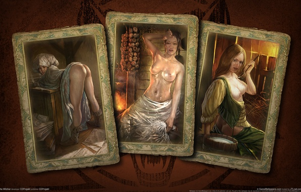 Picture card, girls, the Witcher