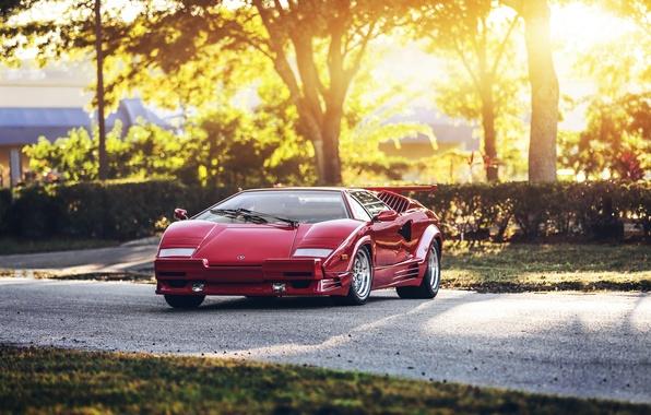 Picture red, supercar, Lamborghini Countach, hq Wallpapers