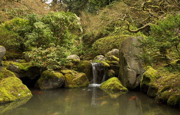 Wallpaper Stones Japanese Gardens Garden Waterfall Trees The Bushes Moss Oregon Stream