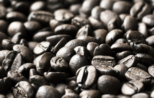 Picture macro, background, widescreen, Wallpaper, mood, coffee, grain, wallpaper, coffee beans, widescreen, background, coffee, full screen, ...