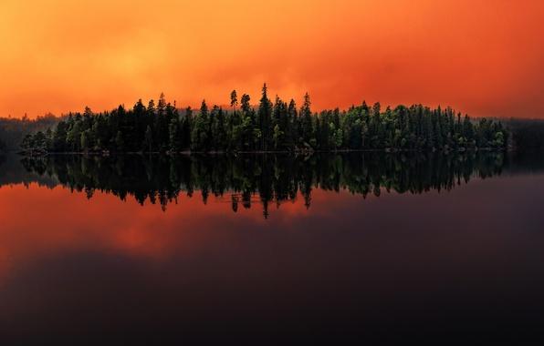 Picture forest, lake, reflection, Sweden, Sweden