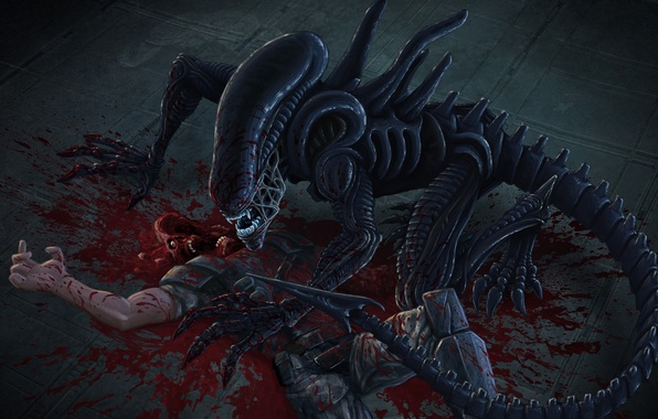 Picture soldiers, the corpse, alien, xenomorph
