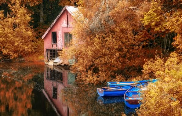 Picture autumn, lake, boats, landscape, nature, autumn, leaves