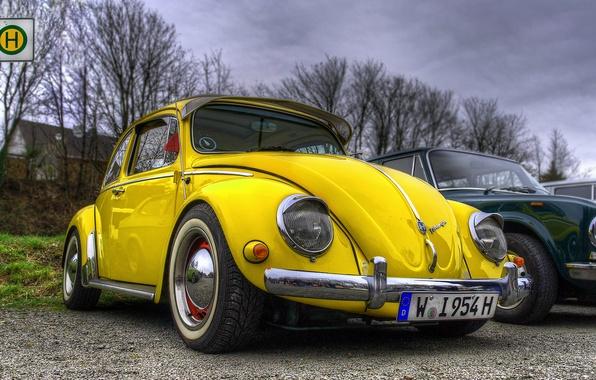 Picture beetle, volkswagen, hdr, vintage, yellow, beetle, car. vw
